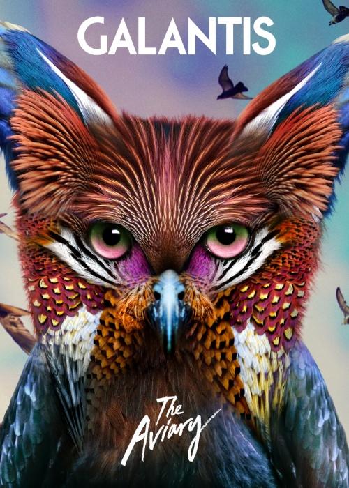 """Galantis - """"The Aviary"""""""