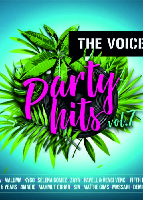 Various Artists - The Voice Party Hits, Vol.7